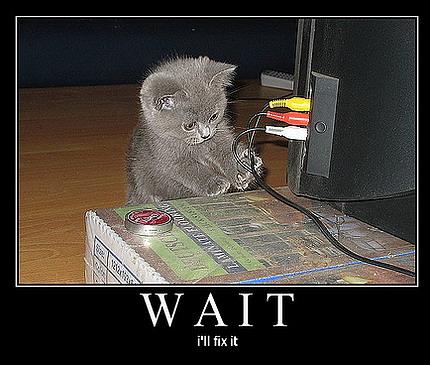 cat4534JH3423