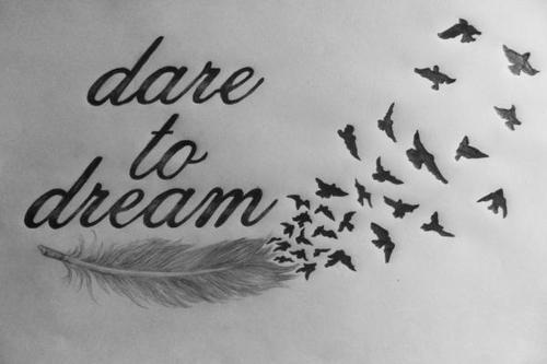 dream801